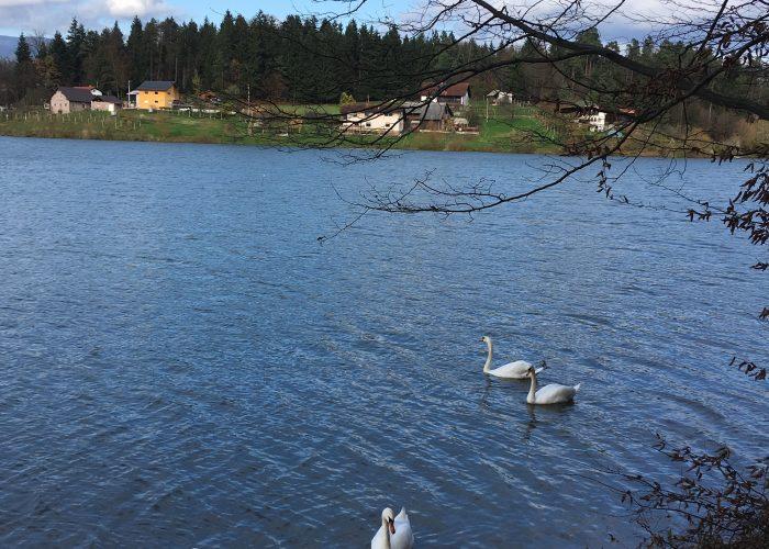 Smartinsko-jezero2