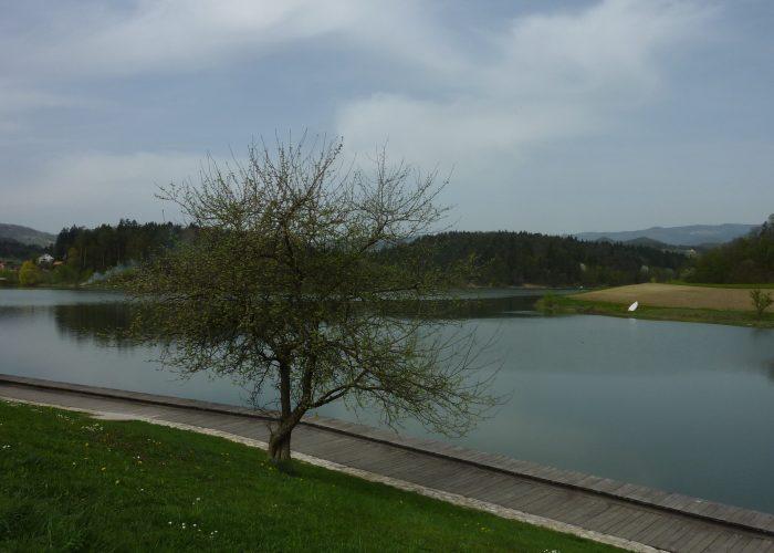 Smartinsko-jezero3